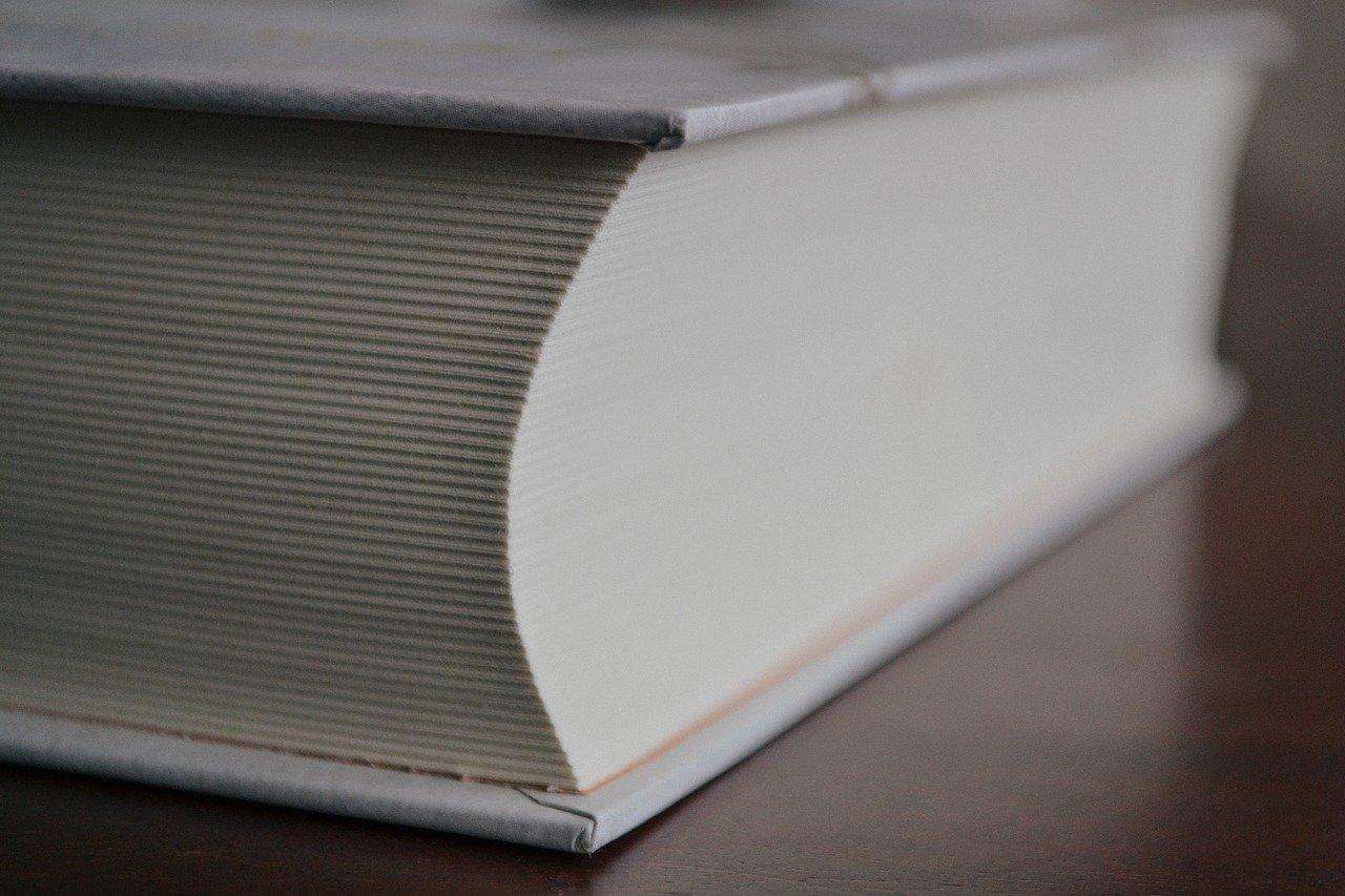big, book, business